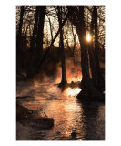 Sunrise on the River - Fog and Light 1 Photographic Print by Paul Huchton