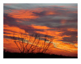 Fire Sunrise One Photographic Print by Ana Villaronga