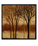 Moon Light Elms 1 Photographic Print by Wendy Kroeker (Erhardt)
