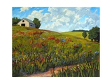Wildflower Hillside in Boulder County, CO Giclee Print by Patty Baker