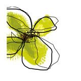 Green Petals Fotografisk tryk af Jan Weiss