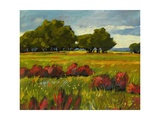 Afternoon Fields 1 Giclee Print by Patty Baker