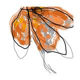 Orange Petals Fotografisk tryk af Jan Weiss