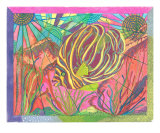 Reef Life On A Sunny Morning Giclee Print by Annette Maggio