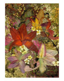 Lilies - Pressed Flower Art Giclee Print by Shelley Xie
