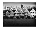 Painted Ladies Mono Photographic Print by John Gusky