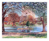 Big Spring Park Giclee Print by Alison Levson