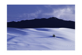 White Sands And San Andres Mountain Range N M Photographic Print by Steve Gadomski