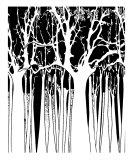 White N Black Trees Photographic Print by Estela Lugo