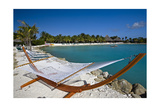 Hammock On Iguana Beach, Aruba Photographic Print by George Oze