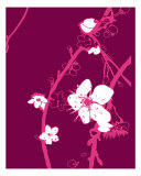 Pink Cherry Blossom Photographic Print by Estela Lugo