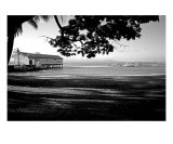 PO-06A Jetty Museum Photographic Print by Luke Kneale