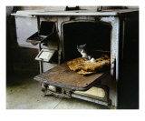In The Oven Photographic Print by Art Gore
