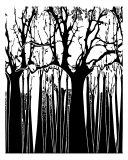 Black N White Trees Photographic Print by Estela Lugo