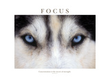 Fokus - Konzentration ist das Geheimnis von Stärke, Englisch Fotodruck von Brian Horisk