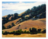 California Hills Photographic Print by Devan Perona