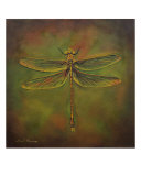 Dragonfly Trina Giclee Print by Sheryl Bunnage