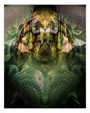 Celerian Photographic Print by Lynda Lehmann