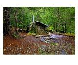 RA-02A Forest Home Photographic Print by Luke Kneale