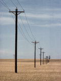 A Line of Telephone Poles Traveling over Golden Grassland Photographic Print by George Grall