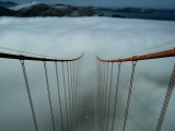 Cables of the Golden Gate Bridge Stand Above the Early Morning Fog Photographic Print by Randy Olson