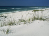 Dune Grasses Hold White Sand in Place Along a Stretch of Beach Photographic Print by Raymond Gehman