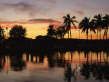 Sunset and Silhouetted Palm Trees Reflected in the Water Photographic Print by Medford Taylor