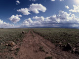 A Dirt Road Leads to the Horizon Photographic Print by George Grall