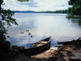 Scene with Ducks and Canoe on Lake Kezar Photographic Print by Robin Siegel