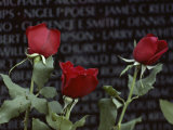 Roses Glow against the Black Granite of the Vietnam Veterans Memorial Fotografisk tryk af Karen Kasmauski