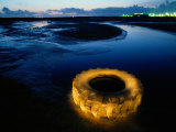 A Discarded Tire Glowing Like Neon in the Marsh Photographic Print by Raymond Gehman