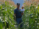 A Farmer Stands with His Child in a Cornfield Photographic Print by Melissa Farlow