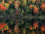 Autumn Foliage Reflected in a Canadian Lake Lámina fotográfica por Raymond Gehman