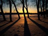Twilight Winter View Near St. Petersburg Photographic Print by Sisse Brimberg