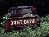 An Abandoned Vehicle Ironically Bears a Sign Warning against Dumping Photographic Print by Chris Johns