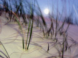 A View of a Full Moon Rising Above a Sand Dune Photographic Print by Raymond Gehman