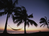 Twilight View of Beach with Hammock and Palms, Costa Rica Photographic Print by Michael Melford