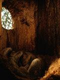 Two Eastern Gray Squirrels Lie Snugly Asleep Lámina fotográfica por Johns, Chris