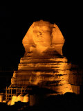 The Great Sphinx Illuminated at Night Photographic Print by Richard Nowitz