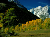 Autumn View of Aspen Trees against a Backdrop of Snow-Covered Mountains Fotografisk tryk af Paul Chesley