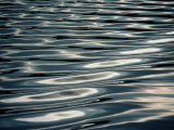 Sunlight Reflecting on Rippling Water Photographic Print by Todd Gipstein