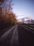 Scenic View of a Dirt Road Photographic Print by Sam Abell