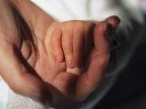 A Close View of a Mother Holding Her Newborn Babys Hand Photographie par Joel Sartore