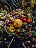 Various Vegetables in a Basket at the Tilth Festival in Seattle Photographic Print by Sam Abell