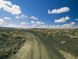 Dirt Road Across Volcanic Desert, Arizona Photographic Print by David Edwards