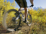 Cyclist Rides Mountain Bike Among Trees with Autumn Foliage Photographic Print by Mark Cosslett