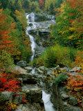A Stream Runs Swiftly over Rocks Fotografisk tryk af Medford Taylor