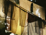 Sunlight Filters Through Prayer Flags Hanging in Kathmandu Photographic Print by Michael Melford