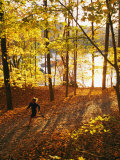 A Woman Jogs Through a Wooded Area in Low Sunlight Fotoprint van Skip Brown