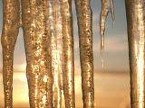 Icicles Photographic Print by James P. Blair